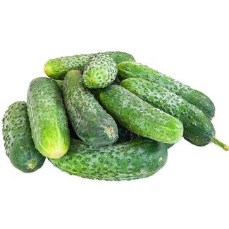 Local Organic Cucumbers, Pickling Box- Code#: PR216784LCO